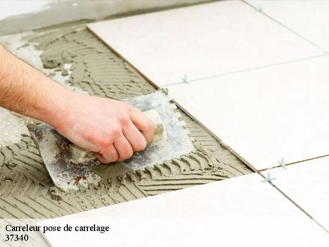 Carreleur pose de carrelage  37340